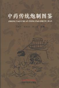 中薬伝統炮制図鑑